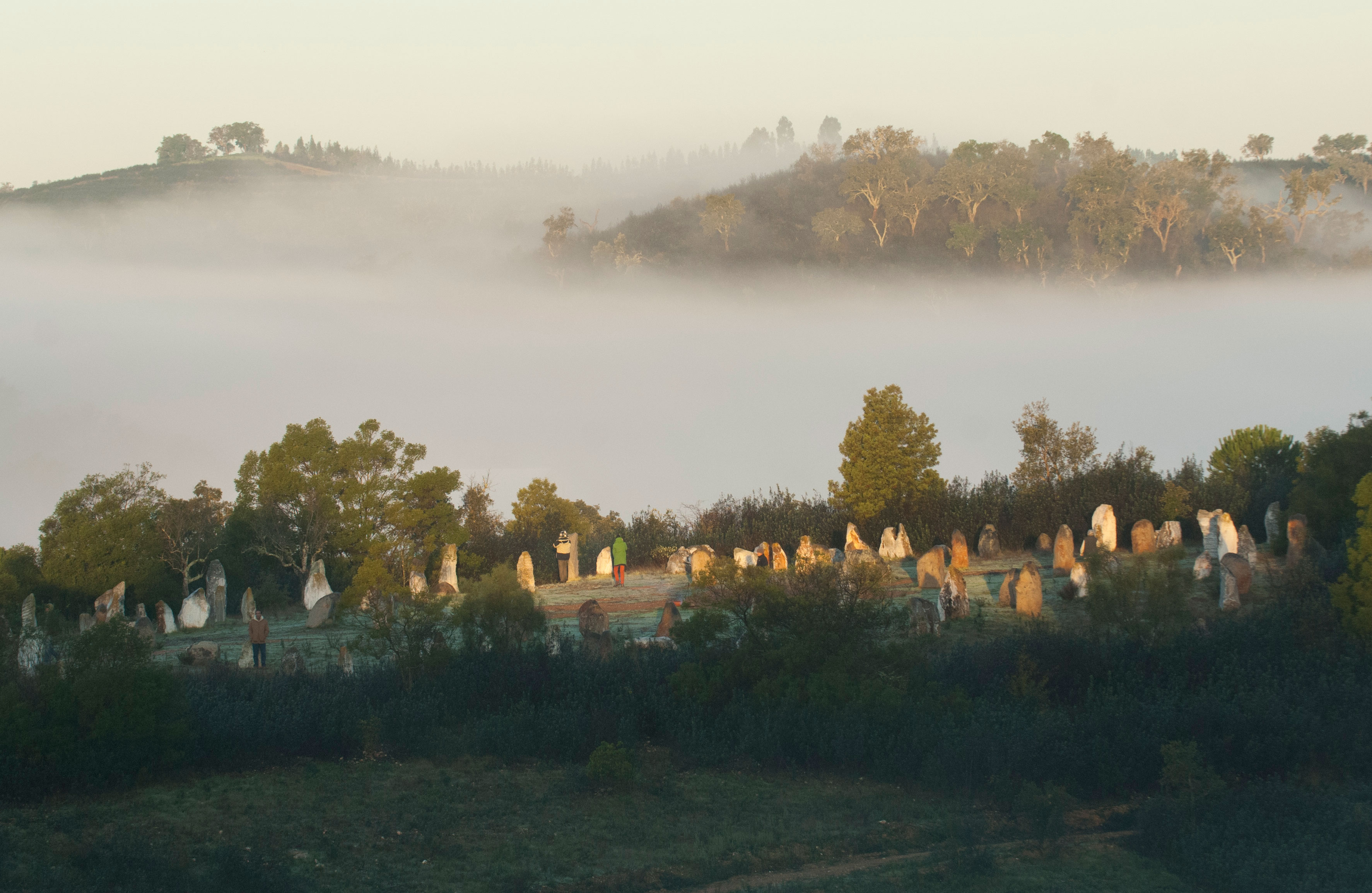Morning View of the Stone Circle